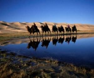 """Монголыг """"Үнэ цэнэтэйд орох газар""""-аар зарлажээ"""