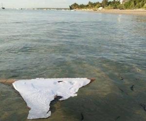 Сураггүй алга болсон Малайзын MH370 онгоцны сэг олджээ