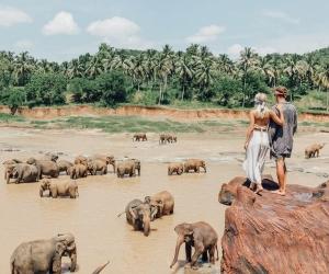 ФОТО: Аяллынхаа зургийг инстаграмдаа хийгээд 9.000 доллар авдаг хос