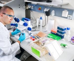 Шинжлэх ухааны салбарын залуу судлаачдыг чадавхжуулна