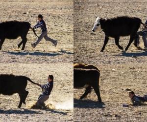 Модон морь, чулуугаар тоглож, гөөхийндөө баярлаж явсан балчир нас минь
