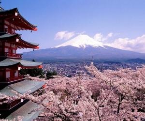 Япон улсын Засгийн газраас ЕБС-ийн багш нарт зориулсан тэтгэлэг зарлалаа