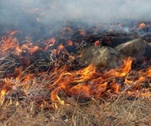 ОБЕГ: Зүүн аймгуудад түймэр гарах өндөр эрсдэлтэй