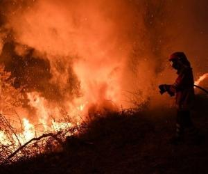 Испани, Португалд дэгдсэн ойн түймэр олон хүний аминд хүрээд байна