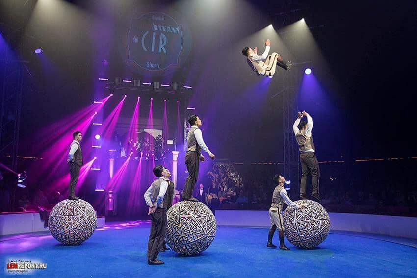 """Монголын циркчид шилдгээр тодорч, """"Алтан заан"""" хүртлээ"""