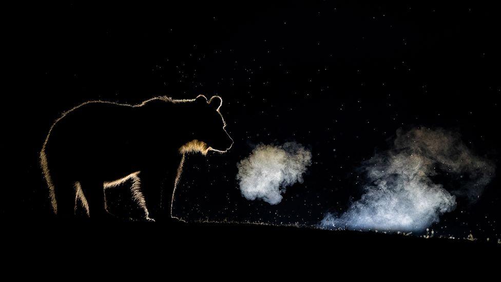 ФОТО: Байгаль эхийн урлан