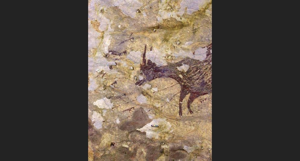 Индонезийн агуйгаас 44 мянган жилийн өмнөх анчдын зураг олджээ