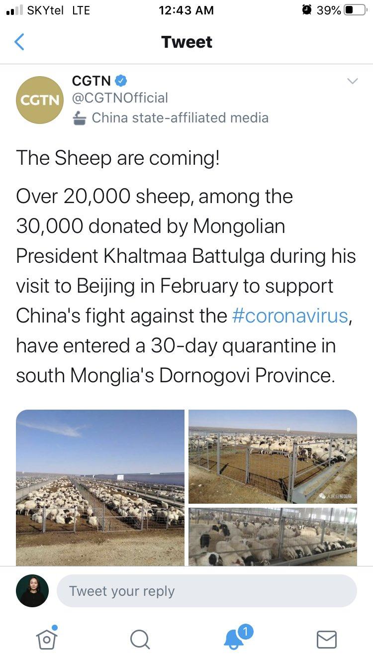Монгол Улсын Ерөнхийлөгчийн хандивласан 20 мянган хонийг тусгаарлажээ