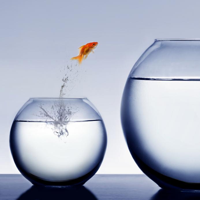accompagner%20le%20changement_0(1) Амжилт хэнд ирдэг вэ?