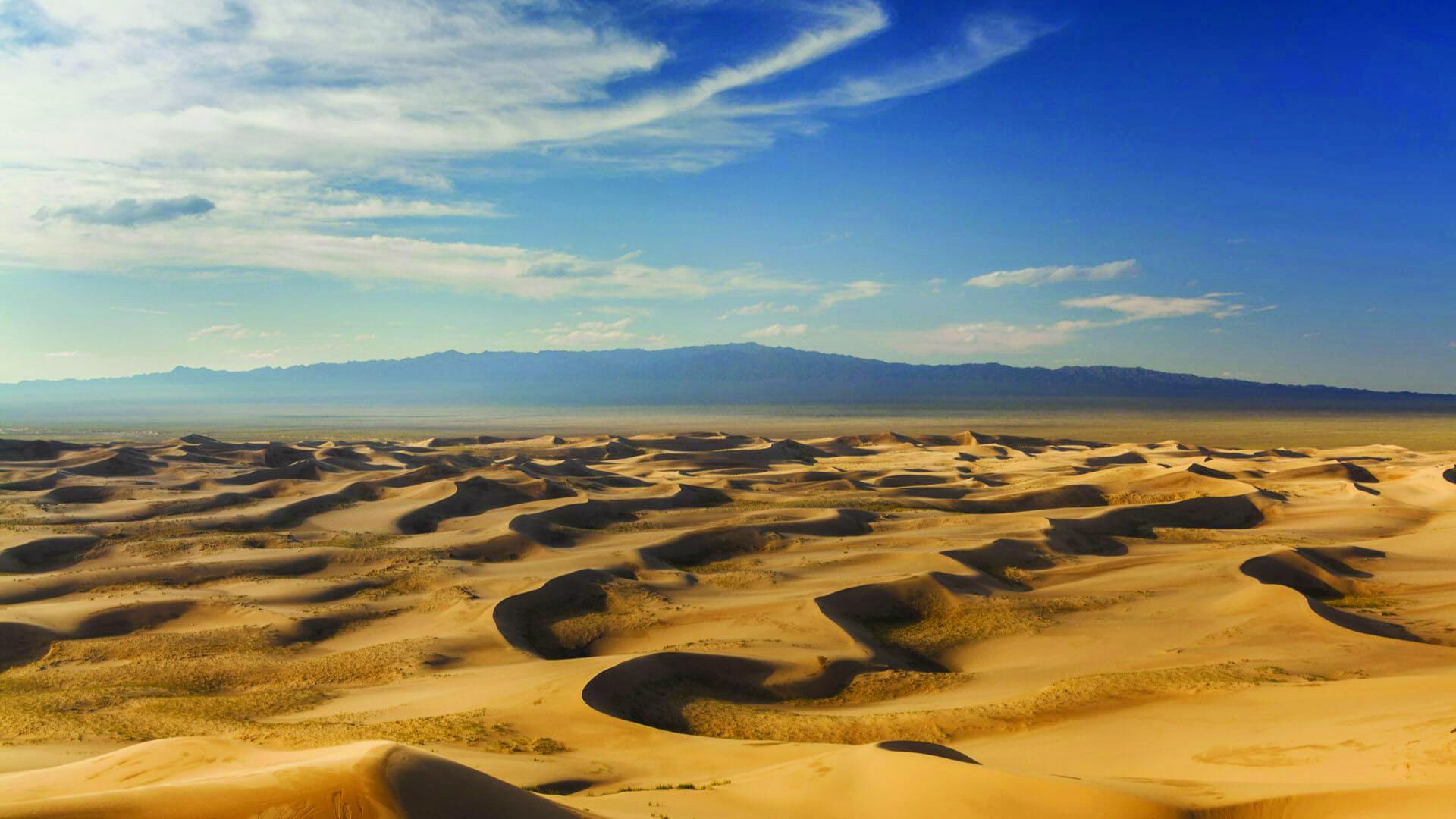 Монголын говийн баялаг хөрсөн доороо биш дээрээ бий